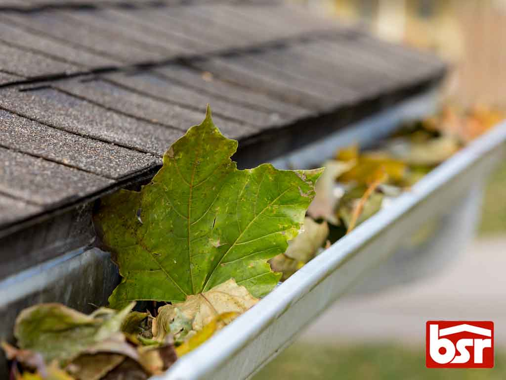 Tips on Preventing Gutter Damage